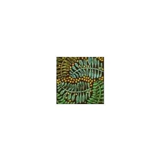Plaque texturée feuilles de Chêne