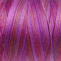 Fil coton Oliver Twists violet 05_