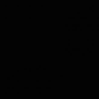Teinture Procion MX 150 Noir de jais