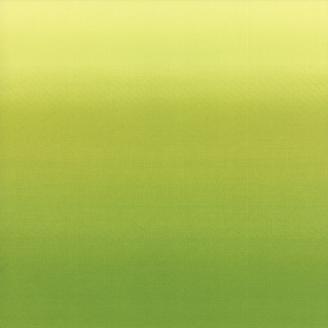 Tissu imprimé dégradé vert pomme(hauteur phot = 55 cm)