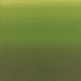 Tissu imprimé dégradé vert olive (hauteur photo = 55 cm)