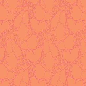 Tissu patchwork Tula Pink - créatures de pierre fond orange - Spirit Animal