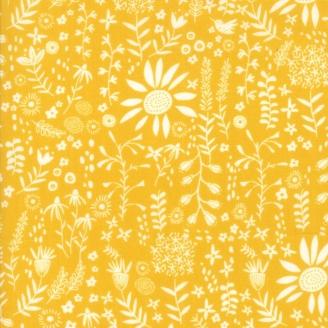 Tissu patchwork fleurs et colibri fond curry - Wild Nectar de Moda