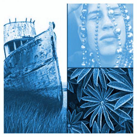 Solarfast de Jacquard, peinture au soleil - Bleu