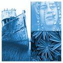 Solarfast de Jacquard, teinture au soleil -  Bleu