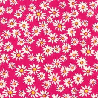 Tissu patchwork Marguerites fond fuchsia - Painted Garden de Moda