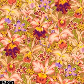 Tissu Philip Jacobs - Grandes orchidées Orchids fond tabac PJ092
