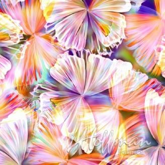 Tissu impression numérique papillons multico