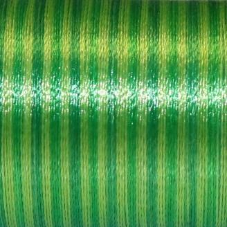 Fil fantaisie multicolore Au Chinois - Vert Clair 226