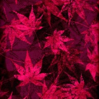 Tissu patchwork feuilles d'érable fuchsia