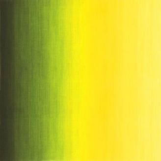 Tissu patchwork dégradé jaune/vert Pineapple - Fresh Hues