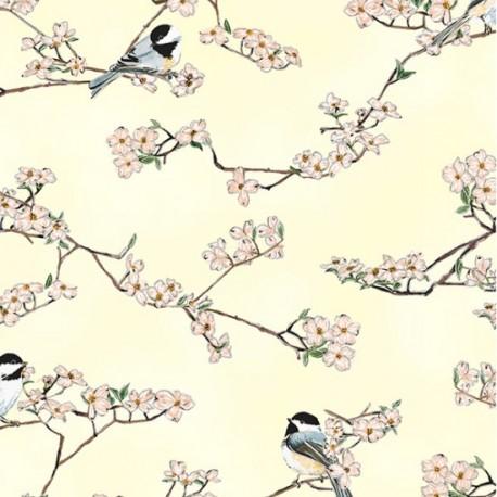 Tissu patchwork mésange et cerisier en fleur fond écru - A little birdie told me