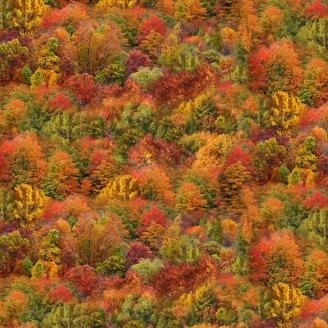 Tissu patchwork forêt en Automne