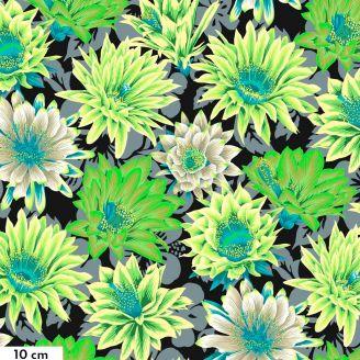 Tissu patchwork Philip Jacobs Fleur de Cactus PJ096 noir et vert
