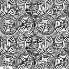 Tissu grande largeur Brandon Mably cercles concentriques noir et blanc