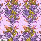 Tissu patchwork Anna Maria Horner oiseaux en frises rose - Bright Eyes