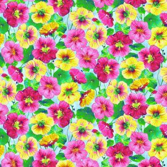 Tissu patchwork fleurs d'hibiscus fond bleu ciel - Hummingbird Heaven