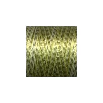 Fil coton Mako 28 dégradé vert 4653_