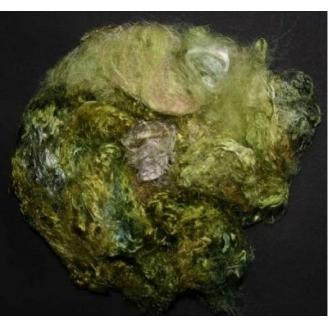 Fibres de soies vertes