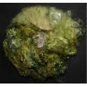 Fibres de soies vert