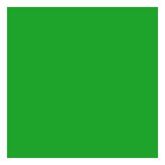 Fil à gant Au Chinois - Vert vif 866