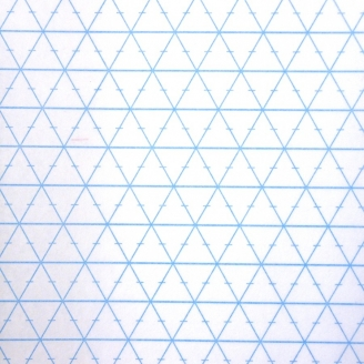 Rasterquick triangle 306