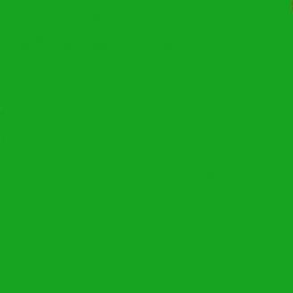 Teinture pour le polyester iDye Poly Vert